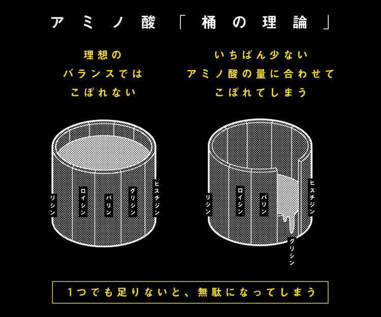 アミノ酸,桶の理論