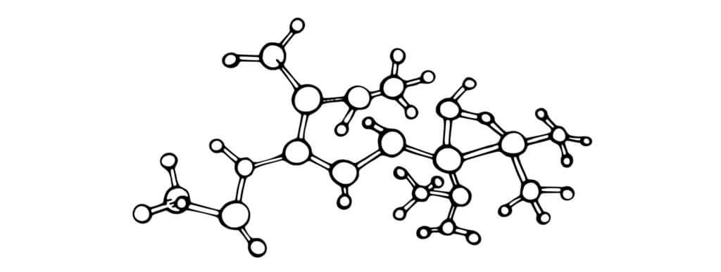 犬,コラーゲン,アミノ酸